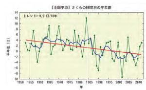 Trend of Timing of Cherry Blossoms